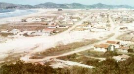 marGrosso_1970