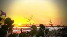 previsao-do-tempo-sol-praia-1